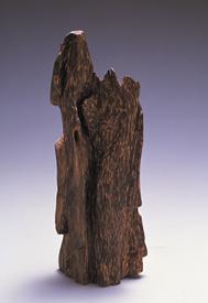 kouboku